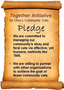 A image of the pledge written on a scroll.