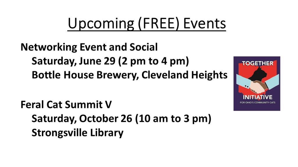 Together Initiative Upcoming (FREE) Events